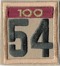 One-piece numerals with 100 year unit veteran bar