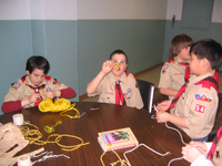 New Scouts Learning Knots